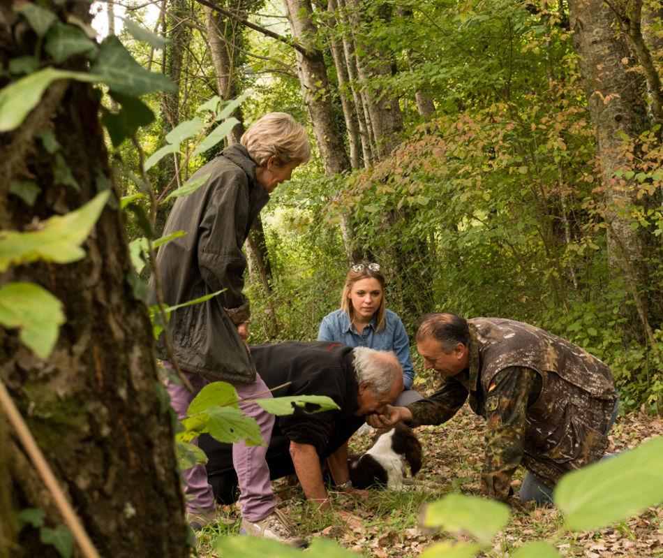 truffle hunt near Florence