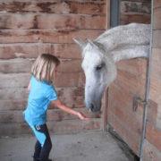 Agriturismo Il Giardino - Equitazione (10)