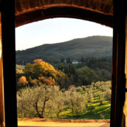 Agriturismo Il Giardino - Ulivo - the view from the bedroom 2
