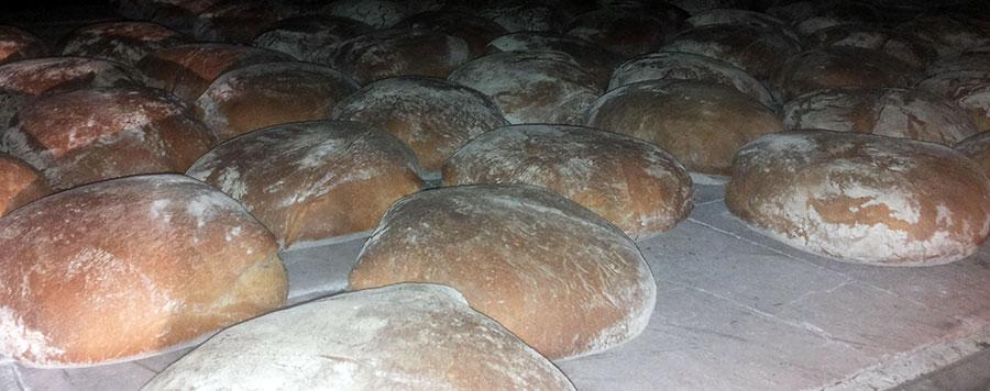 the real bread of Mugello